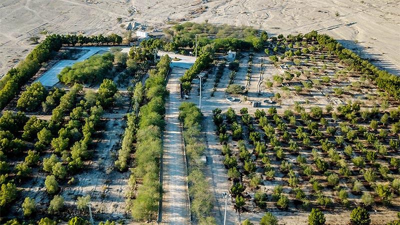 باغ کوشک سیمان هرمزگان با کاربری ورزشی رفاهی ، بازسازی میشود